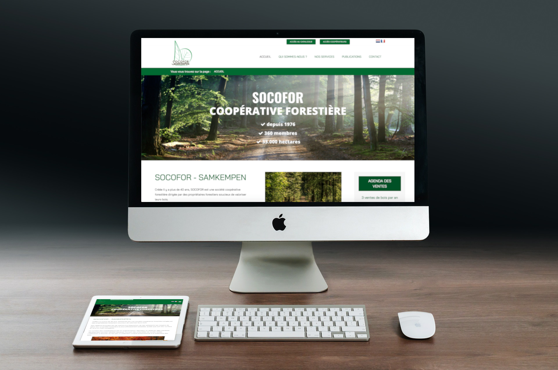 socofor création site web